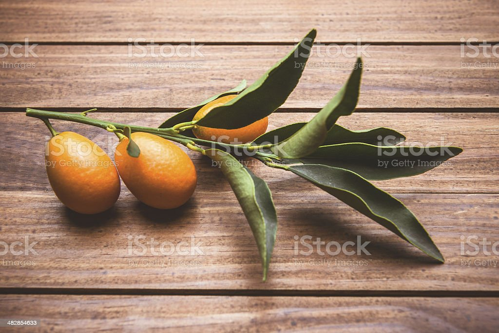 chinese tangerine - kumquat on plank wood table stock photo