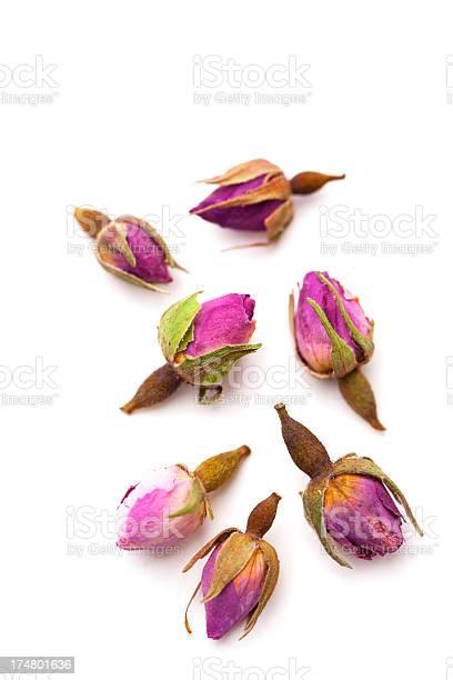 Chinese tea rose picture id174801636?b=1&k=6&m=174801636&s=612x612&h=tl83evvzczvcvnnpest22m6jf54fe3cjbzbvgikpd40=