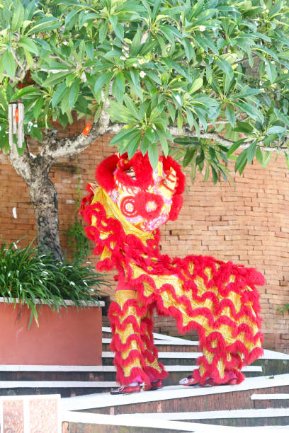 Chinese traditional lion dancing stock photo