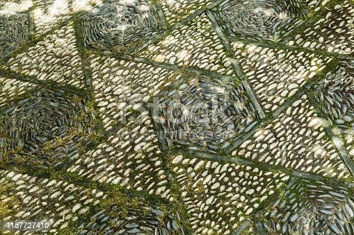 Chinese traditional paving walk way with moss closeup