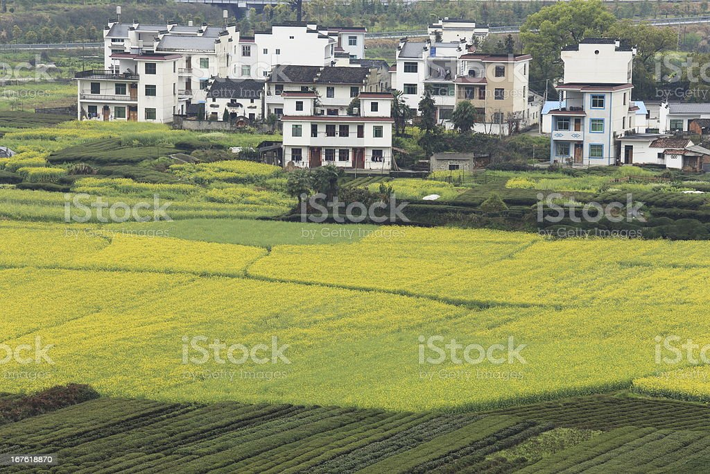 chinese village in spring royalty-free stock photo