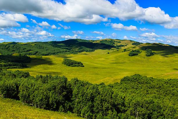 chiński wulanbutong grassland - półpustynny zdjęcia i obrazy z banku zdjęć