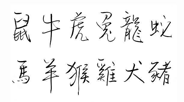chinese zodiac - affentattoos stock-fotos und bilder