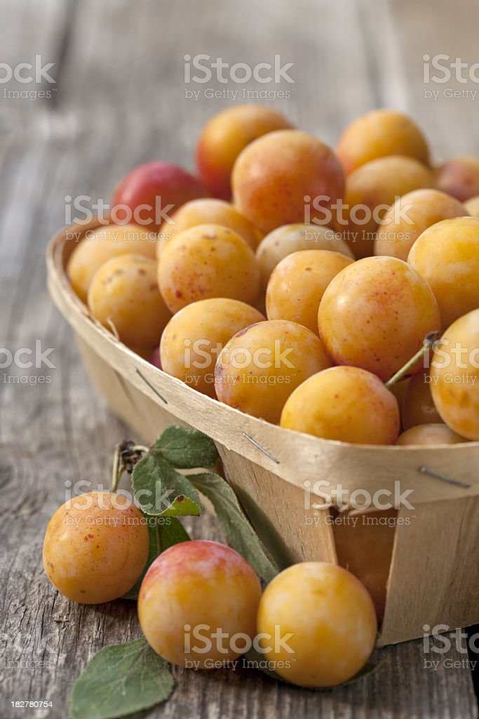 Chip basket full of delicious small yellow plums (mirabelles) stock photo