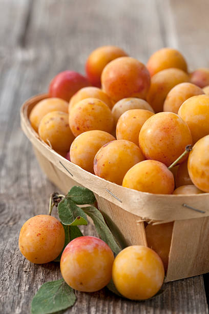 chip panier rempli de délicieuses petites prune jaune (mirabelles - mirabelle photos et images de collection