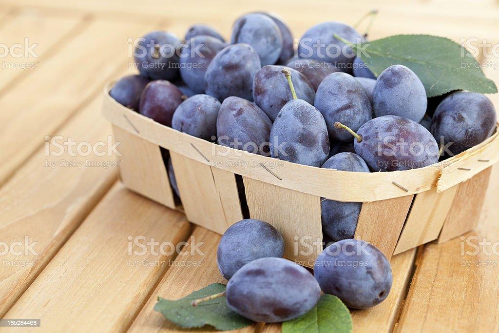 Chip basket full of fresh damson plums (Prunus insititia) stock photo