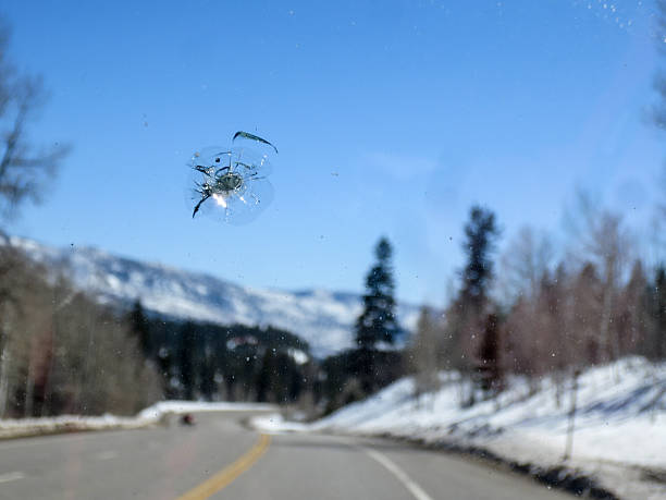 Chipped windshield with road and snow covered mountains