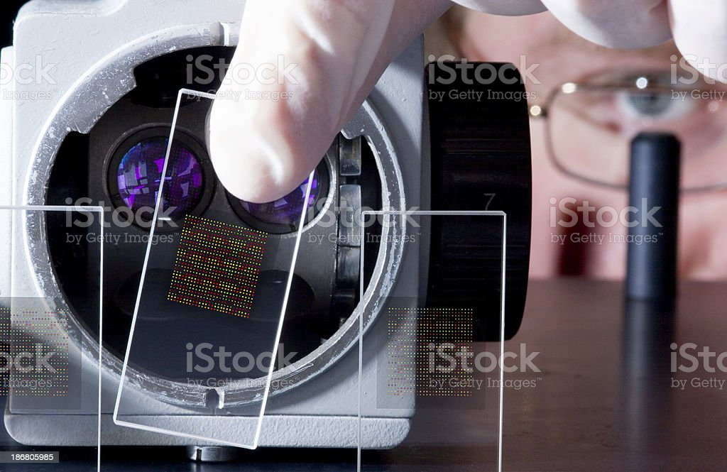 DNA chips stock photo