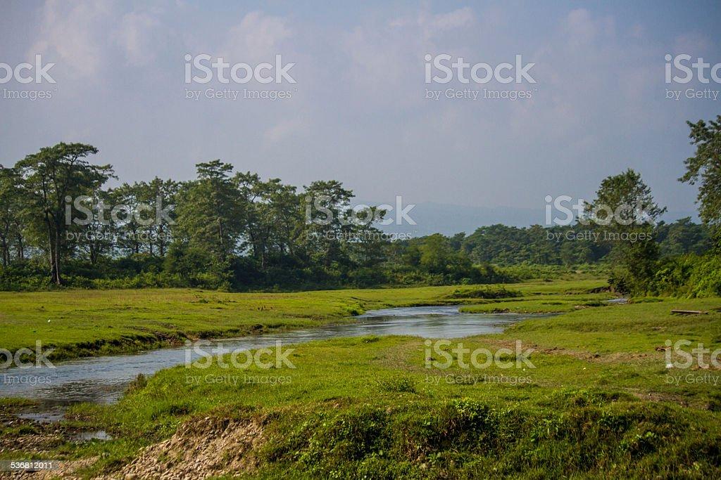 Chitwan National Park, Nepal stock photo