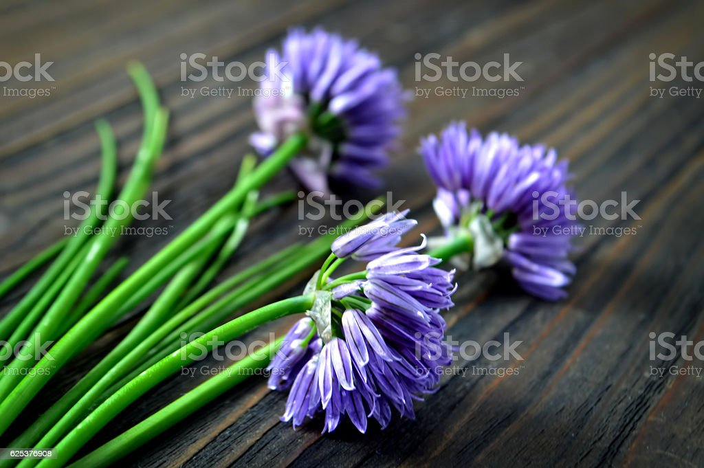Chive flowers on wooden background stock photo