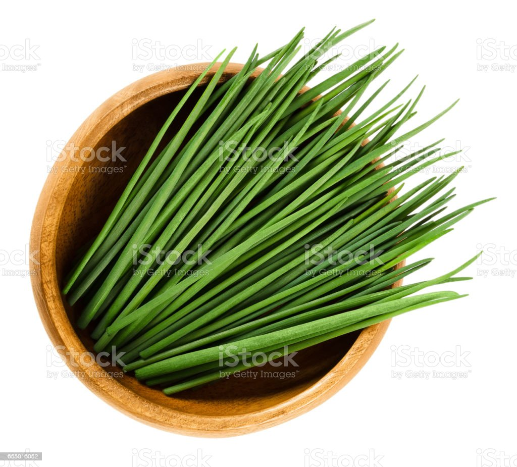 Chives scapes in wooden bowl over white stock photo