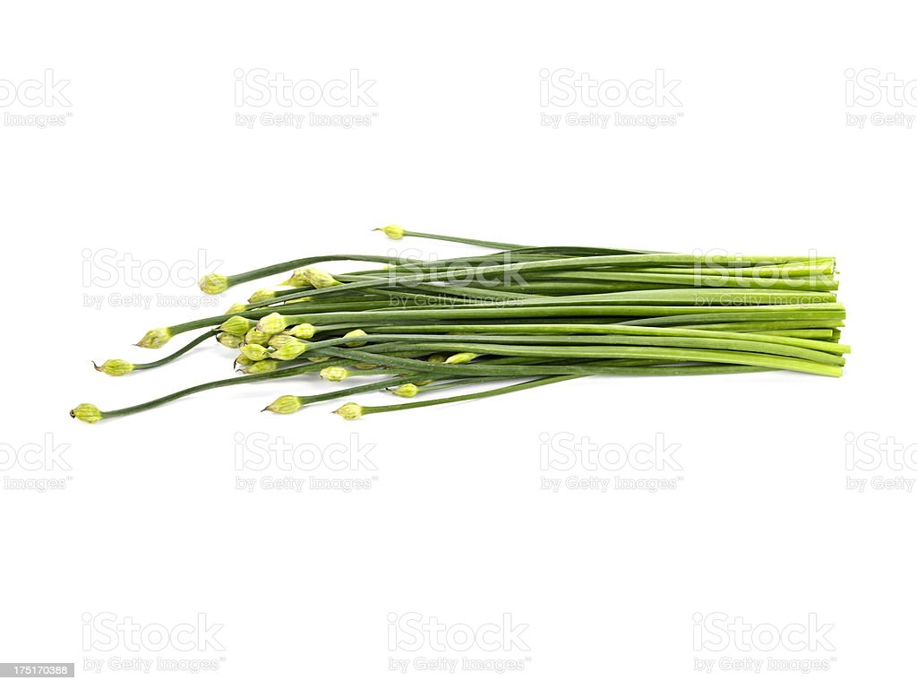 Chives with Flower stock photo