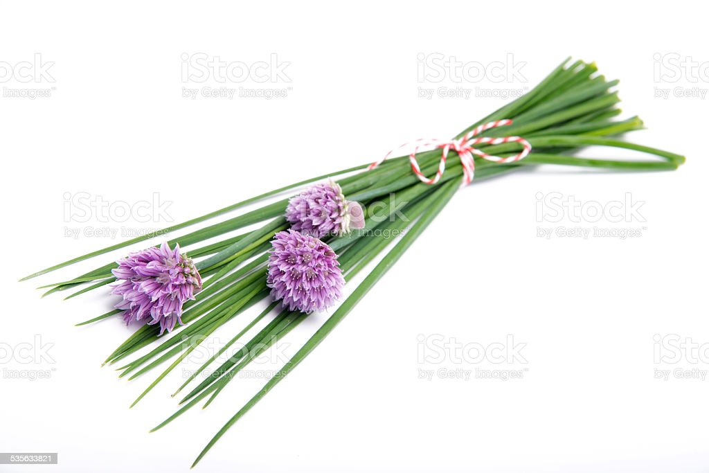 Chives with flowers bouquet stock photo