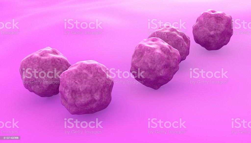 Chlamydia Bacteria stock photo