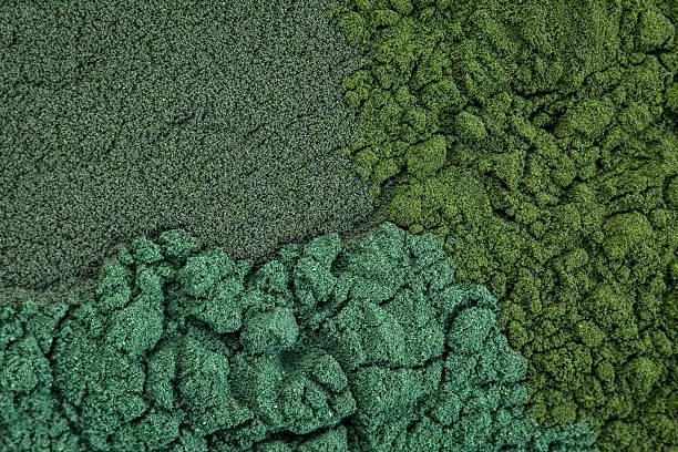 chlorella, spirulina and blue-green - spirulinabakterie bildbanksfoton och bilder