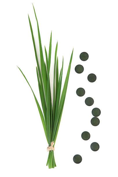 chlorella comprimidos y pasto de trigo - algas fondo blanco fotografías e imágenes de stock