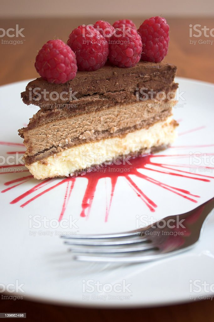Chocoholic royalty-free stock photo