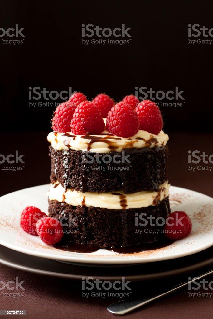 Chocolate and Raspberry cake royalty-free stock photo