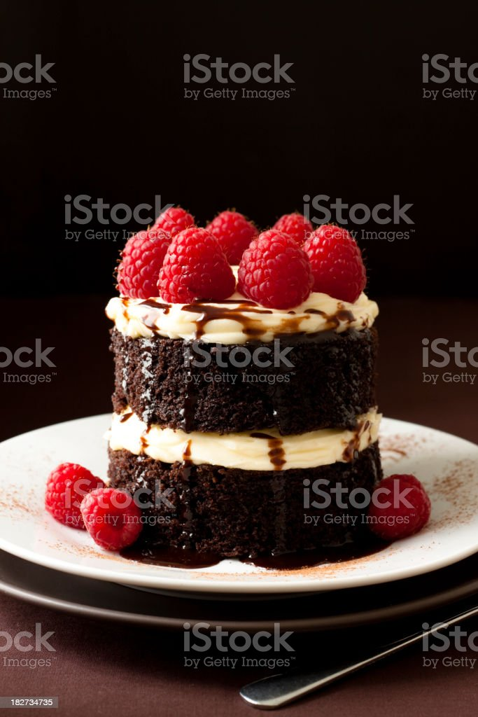 Chocolate and Raspberry cake stock photo