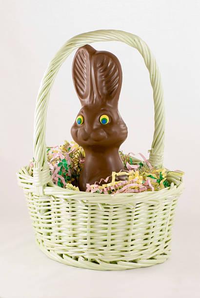 Chocolate Bunny in Basket stock photo