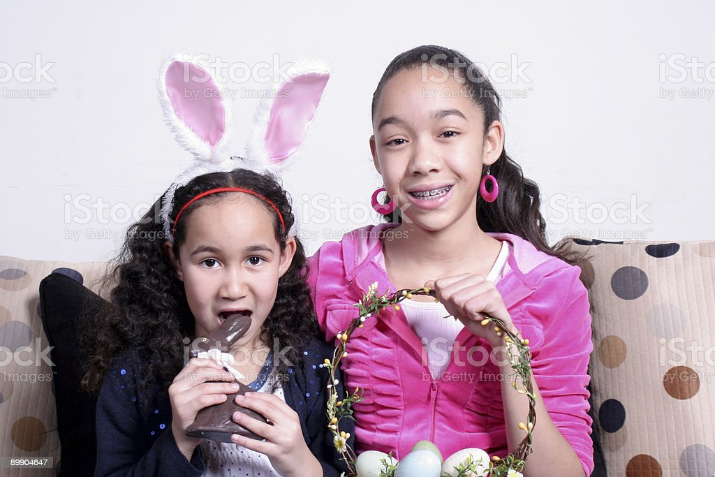 Chocolate Bunny royalty-free stock photo