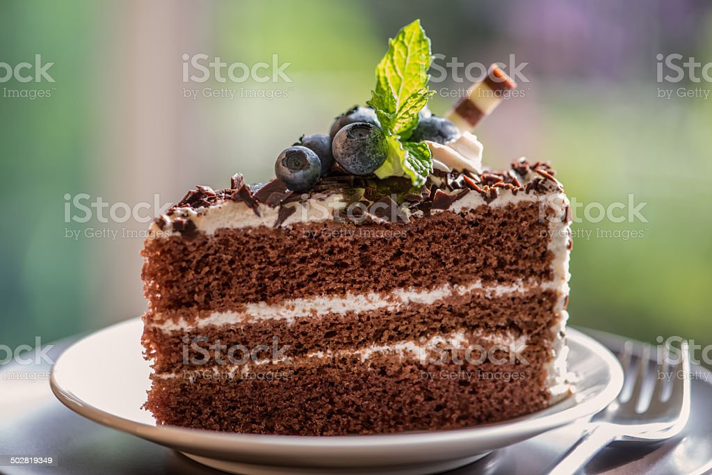 Chocolate Cake Topped with Fresh Blueberries against Garden Background stock photo