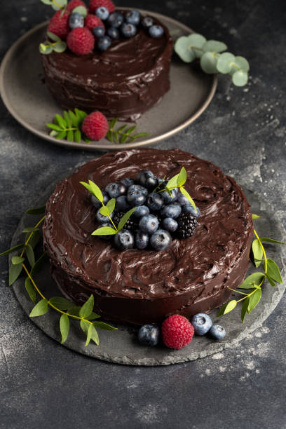 Chocolate cake with berries and green leafs on gray plate stock photo