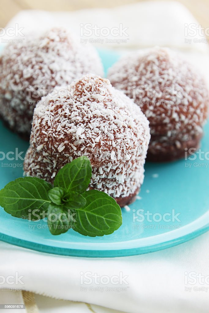 chocolate cake with mint royalty-free stock photo