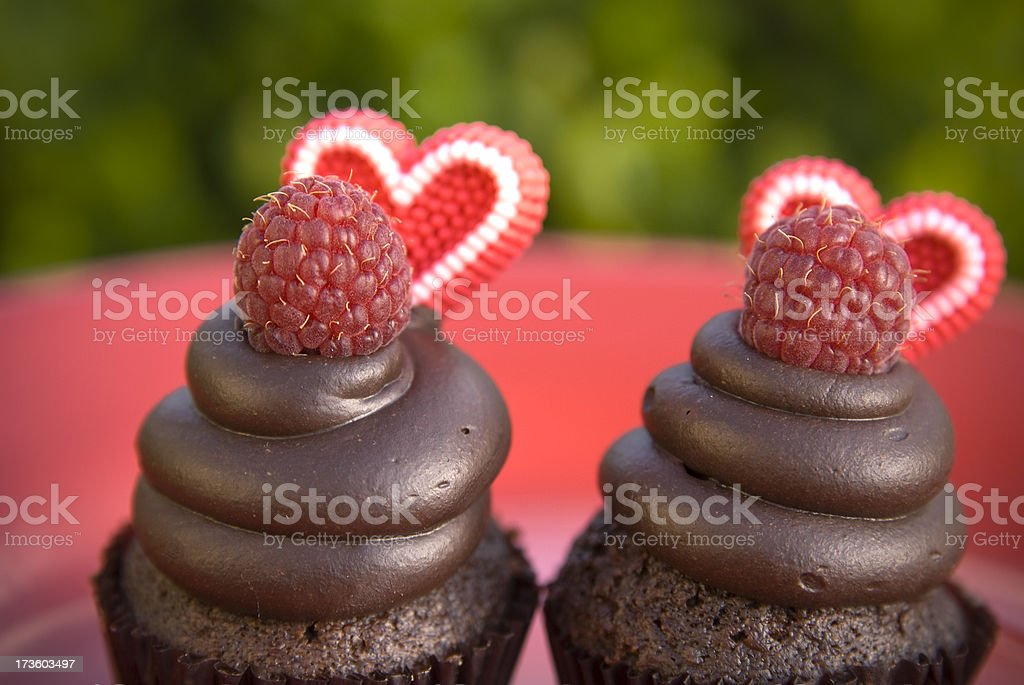 Chocolate & Candy Heart Raspberry Valentine's Day Cupcakes, Dessert Food royalty-free stock photo