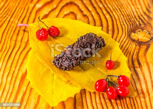 istock chocolate candy on autumn leaf, with red currants 889165986