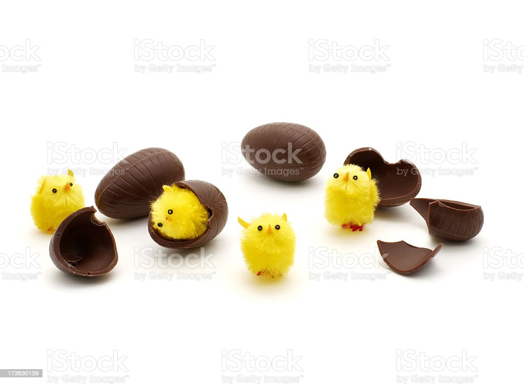 chocolate chicks royalty-free stock photo