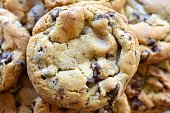 'Warm, golden brown, chocolate chip cookies cooling on a rack.  Shallow depth of field.'