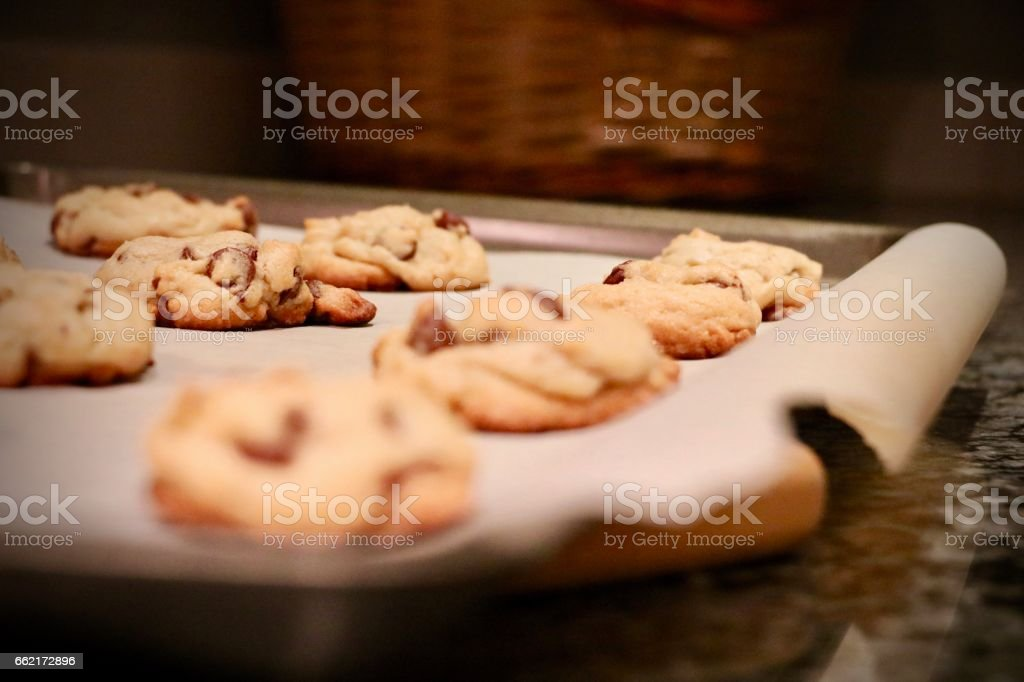 Chocolate Chip Cookies on Cookie Sheet stock photo