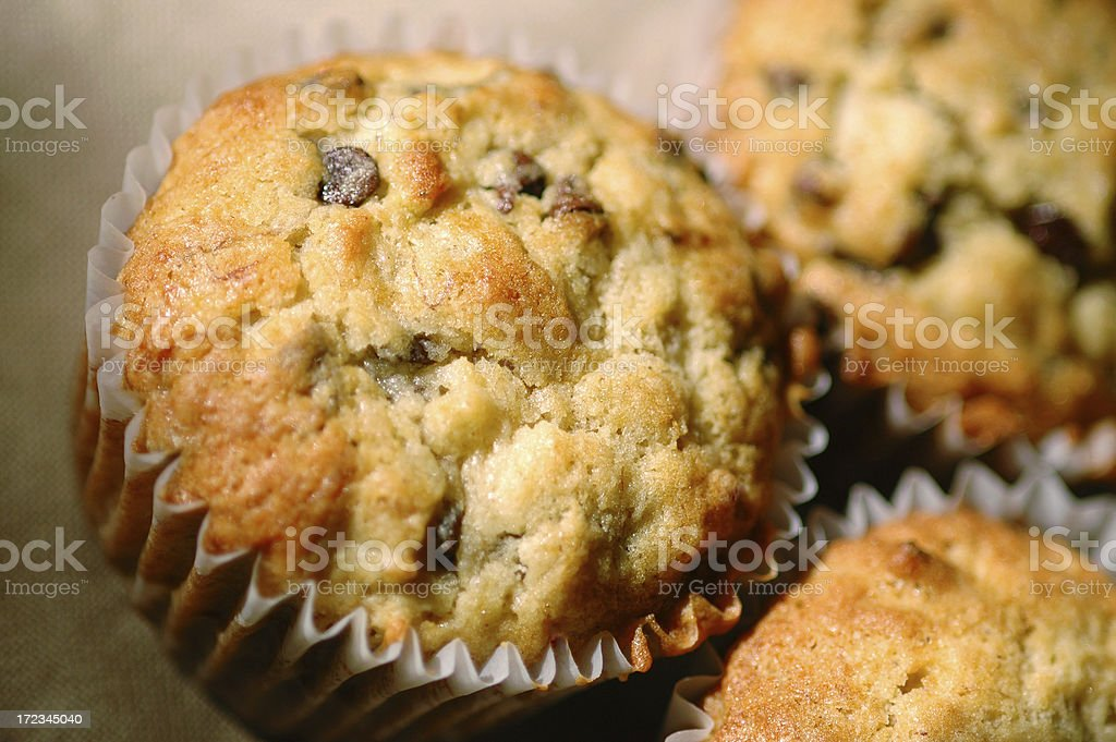 Chocolate Chip Muffins royalty-free stock photo