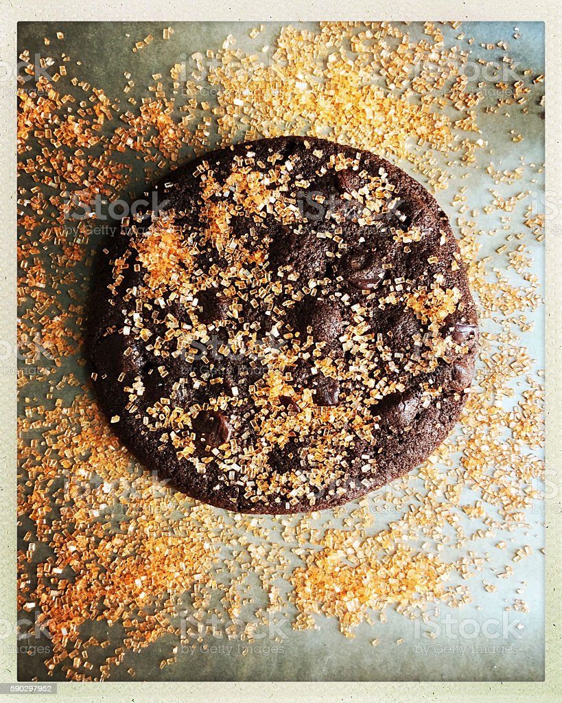 Chocolate Cookie with Orange Gourmet Sugar royaltyfri bildbanksbilder