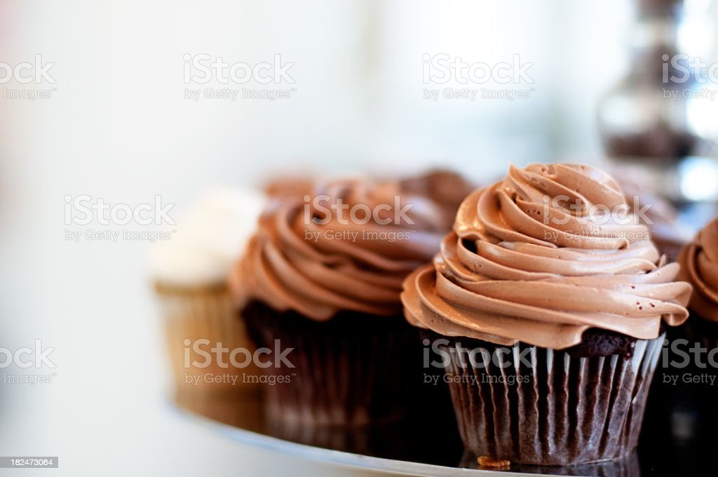 Chocolate Cupcakes stock photo