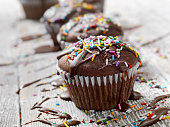 Chocolate Cupcakes with Fudge Icing and Sprinkles