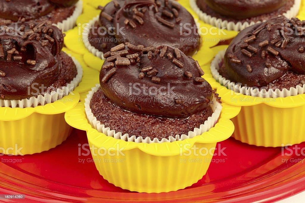 Chocolate Cupcakes with Sprinkles royalty-free stock photo