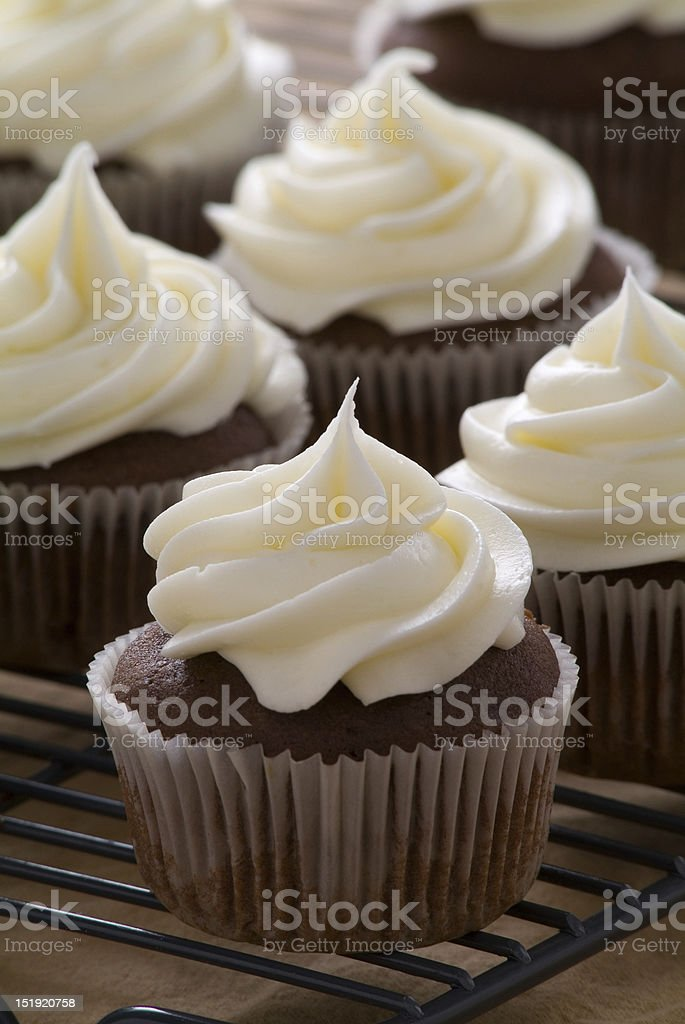 Chocolate cupcakes with vanilla frosting stock photo