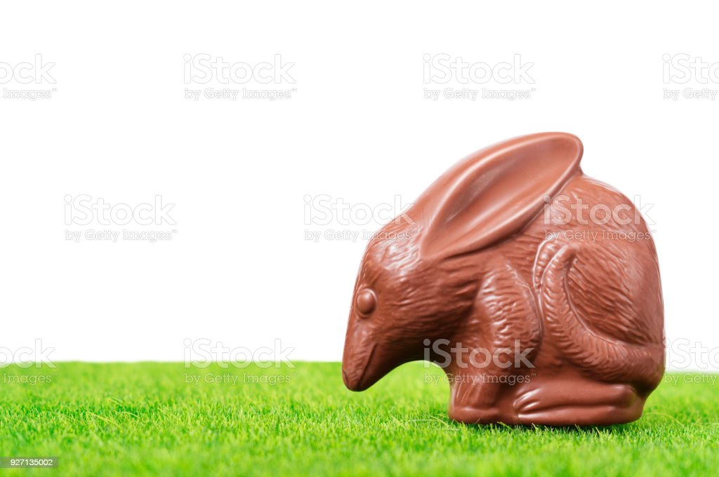 Chocolate Easter bilby stock photo