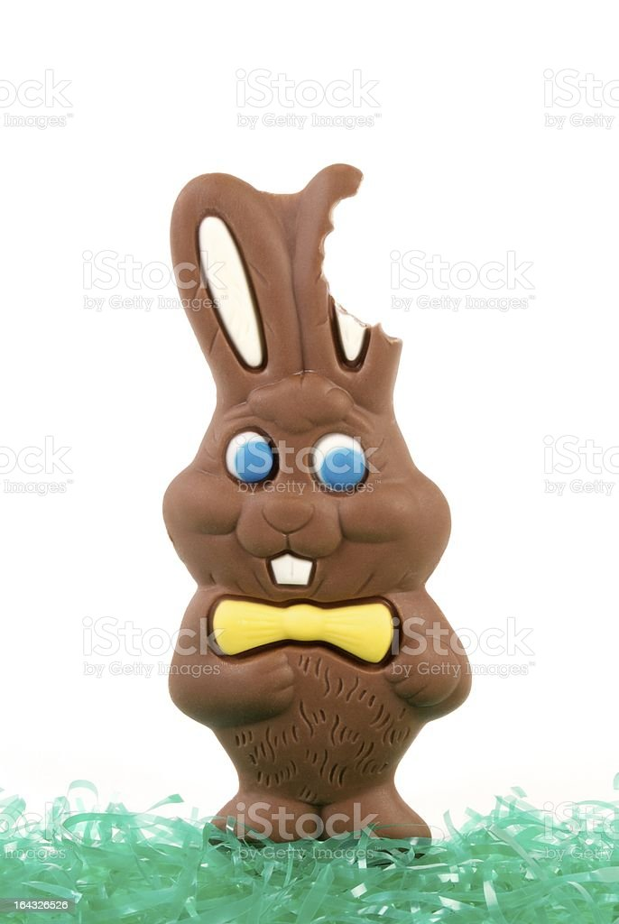 Chocolate Easter Bunny, Bite Out of Ear stock photo