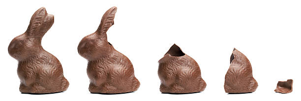 chocolate easter bunny eating sequence - easter bunny stock photos and pictures