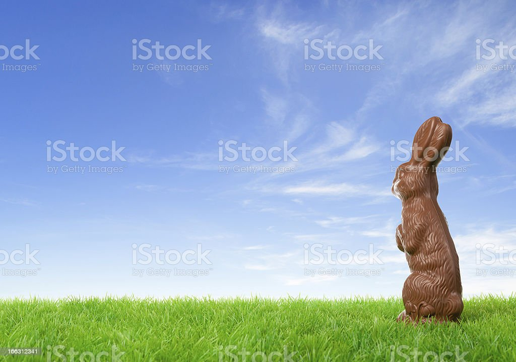 Chocolate easter bunny looking at bright sky royalty-free stock photo