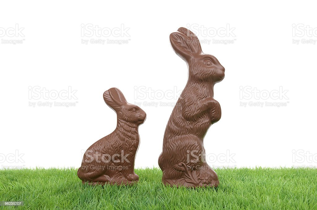 Chocolate Easter Rabbits royalty-free stock photo