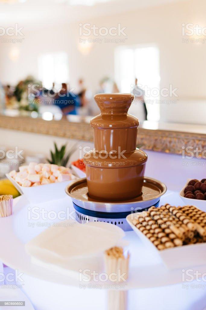 chocolate fountain with fruits – zdjęcie