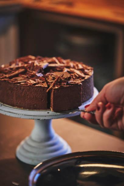 schokoladenschlange kuchen - deutscher schokoladen zuckerguss stock-fotos und bilder