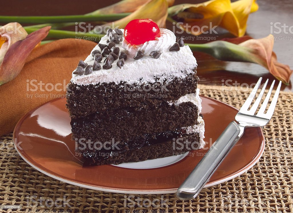Chocolate layer cake royalty-free stock photo