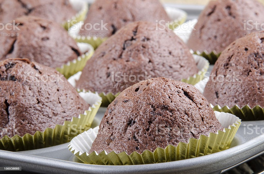 chocolate muffin in a baking mold royalty-free stock photo