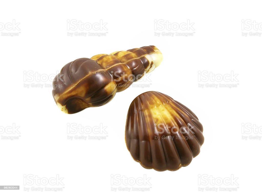 Chocolate seashells royalty-free stock photo