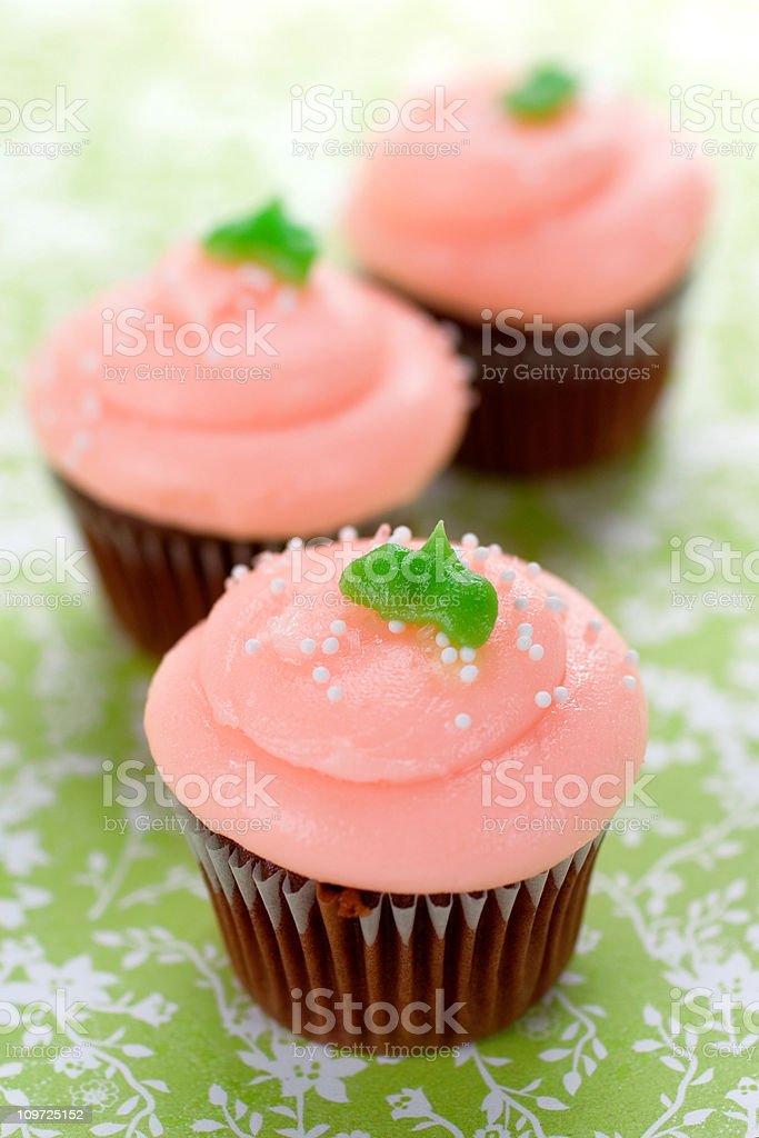 Chocolate Strawberry Cupcakes royalty-free stock photo